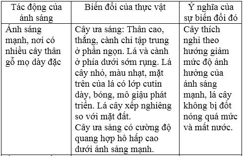 giai sinh lop 12 bai 35 moi truong song va cac nhan to sinh thai 3 - Giải Sinh lớp 12 Bài 35: Môi trường sống và các nhân tố sinh thái